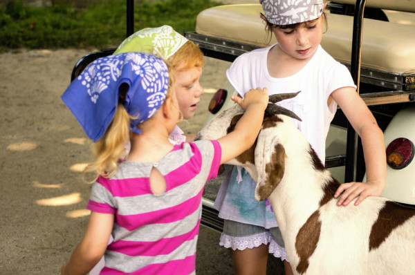 Kids-petting-Goats