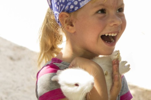 Children Rabbit Laughing