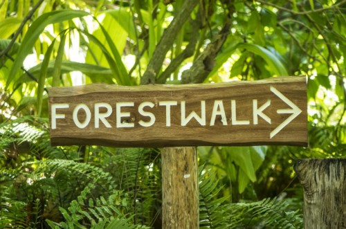 Forest walk Sign