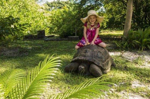 Girl on Tortoise